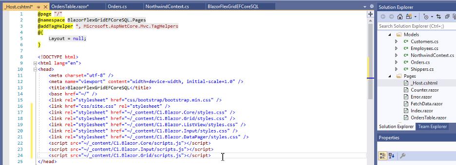 Blazor FlexGrid - Using Entity Framework Core and an SQL Server