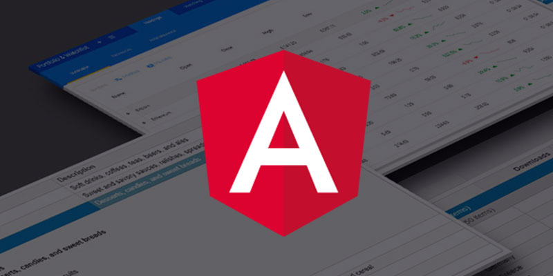 Build a Customizable Angular Data Grid in Minutes