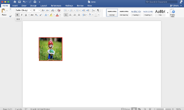 Add Shapes to Word Documents in .NET