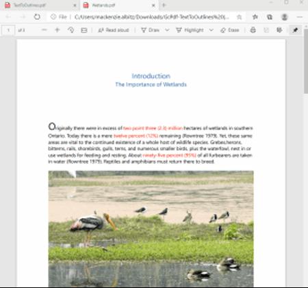 Wetlands PDF