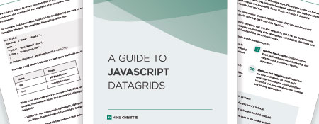 A Guide to Javascript DataGrids