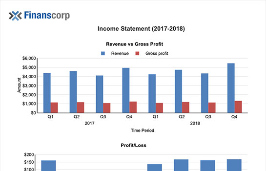 Finance Report - Income Statement Report